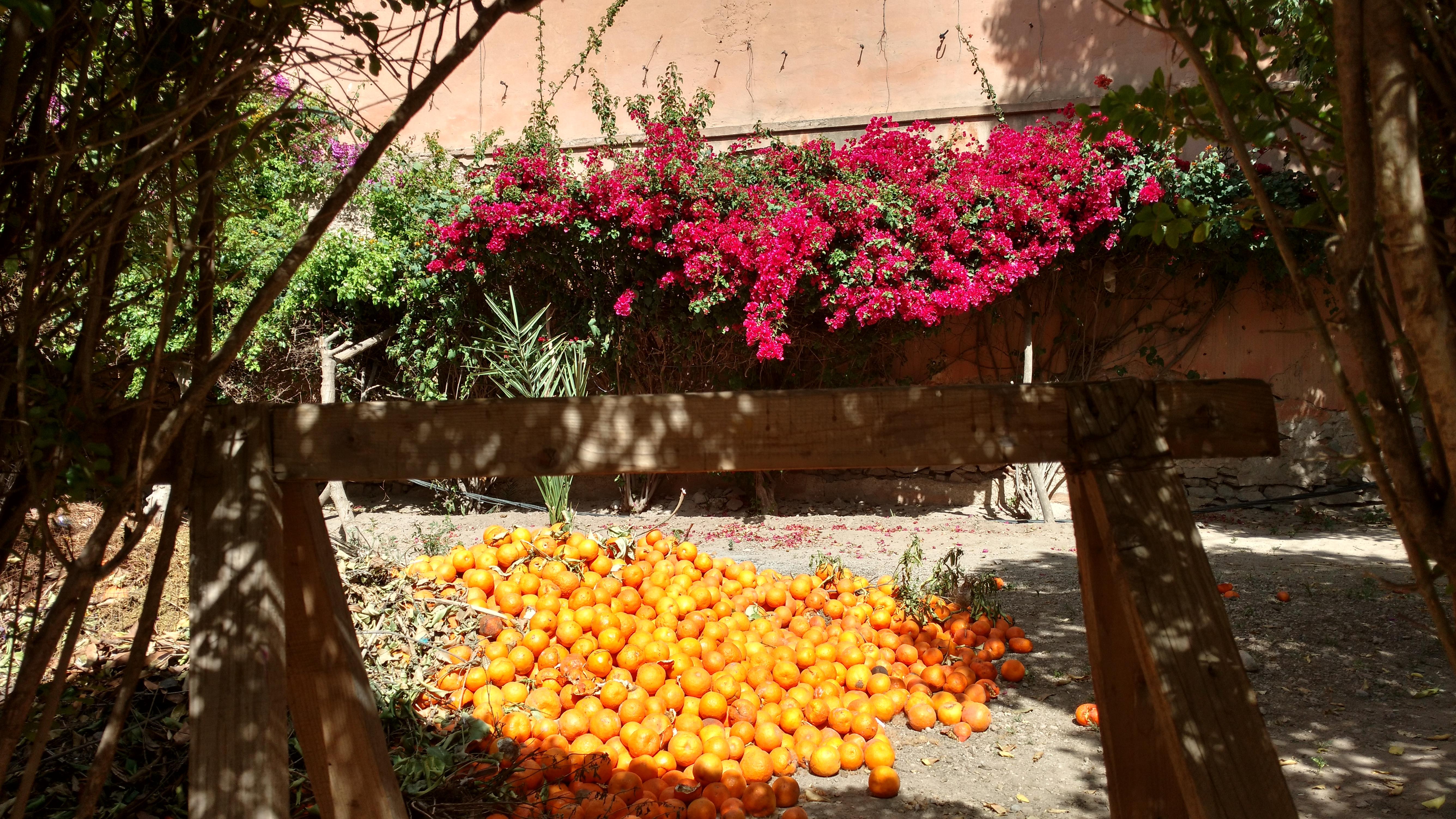 Aux abords du Palais Bahia à Marrakech
