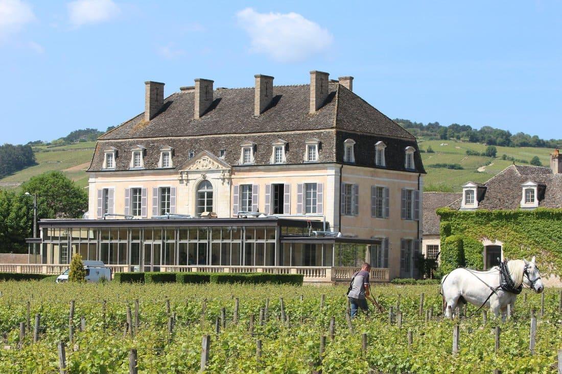 Bio Château de Pommard