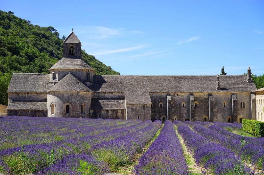 abbaye de sénanque luberon